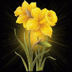 календарь друидов цветы по дате рождения